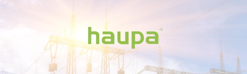 Все о бренде haupa